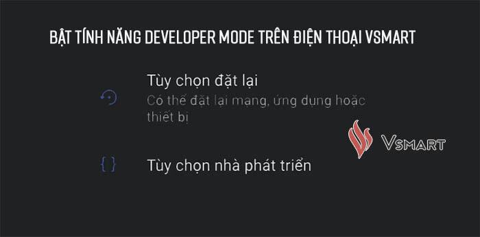 huong-dan-bat-che-do-nha-phat-trien-tren-vsmart.jpg